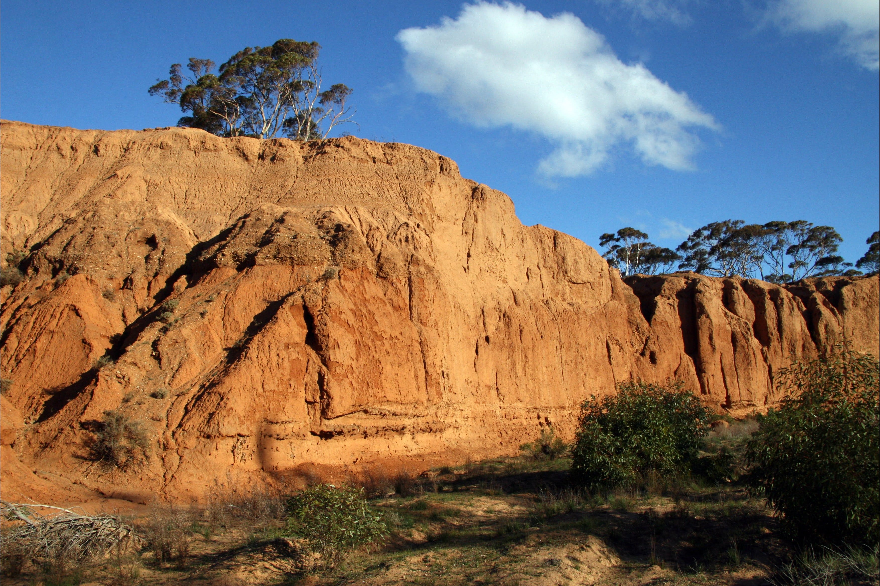 Red Banks Conservation Park - ACT Tourism