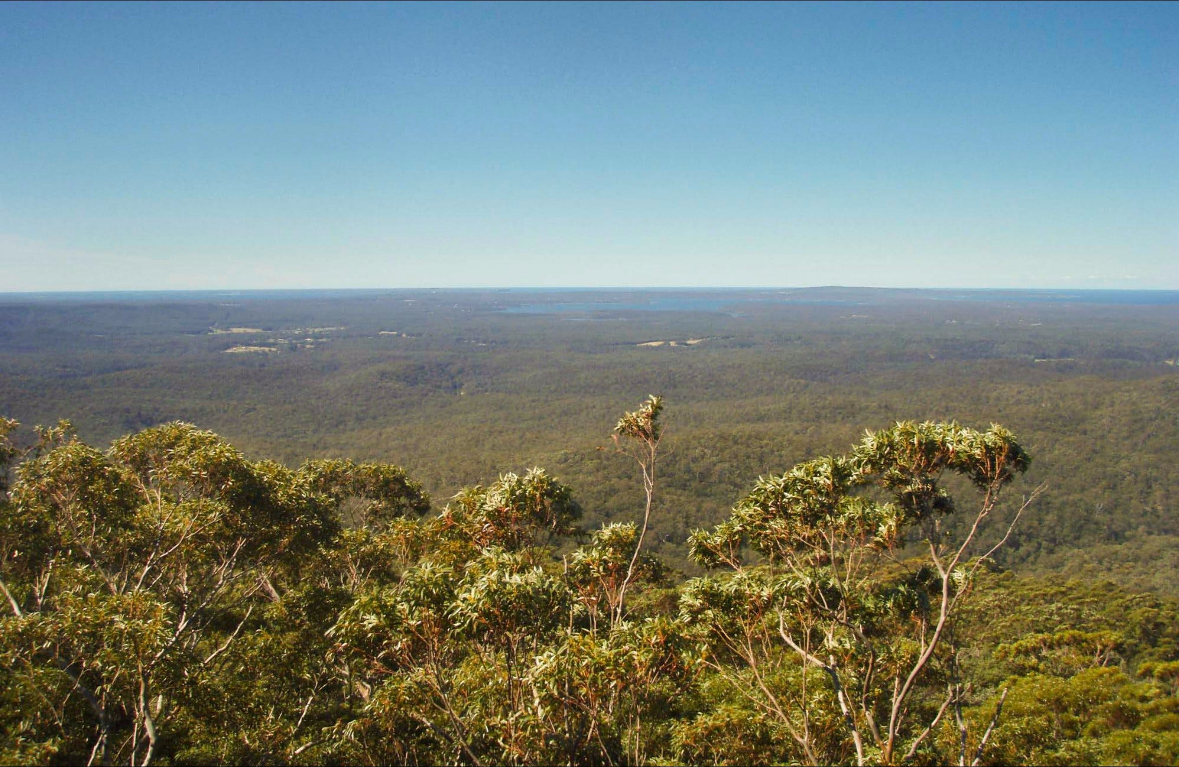 Jerrawangala National Park - ACT Tourism