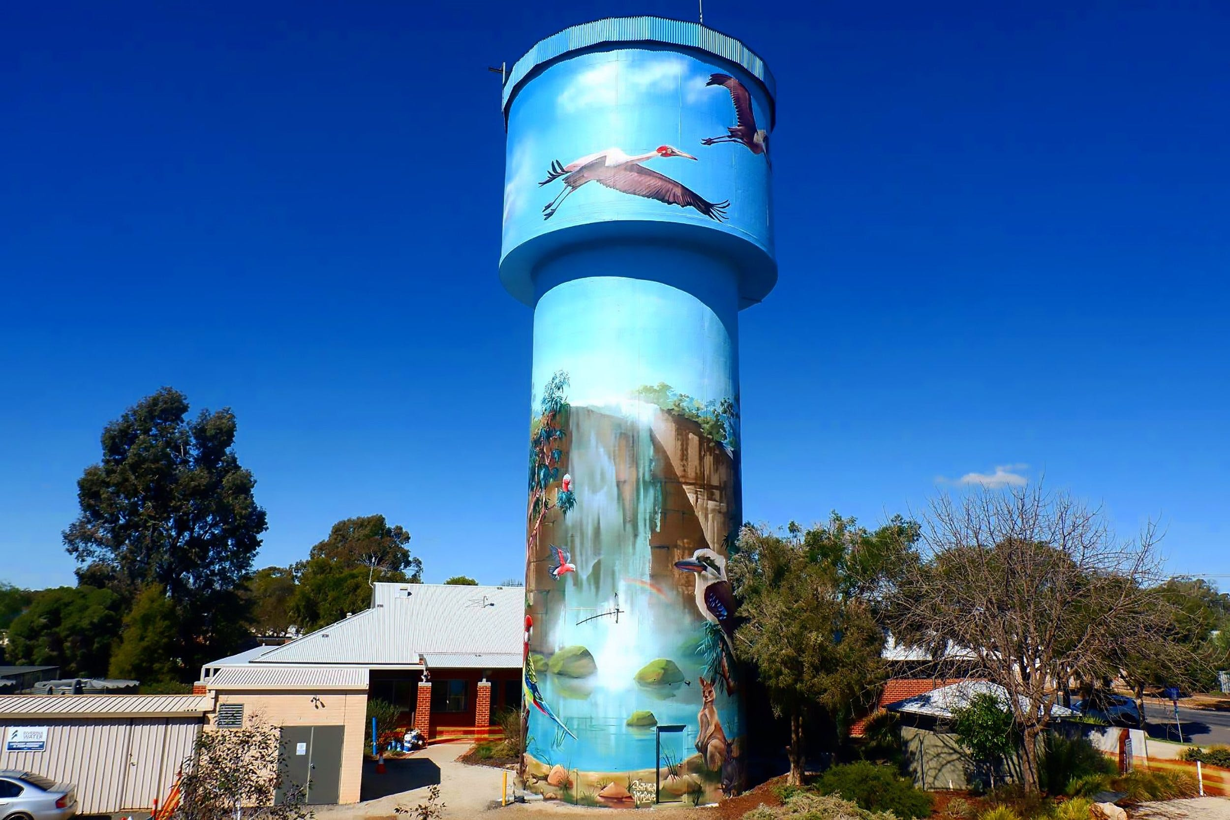 Lockhart Water Tower Mural - ACT Tourism