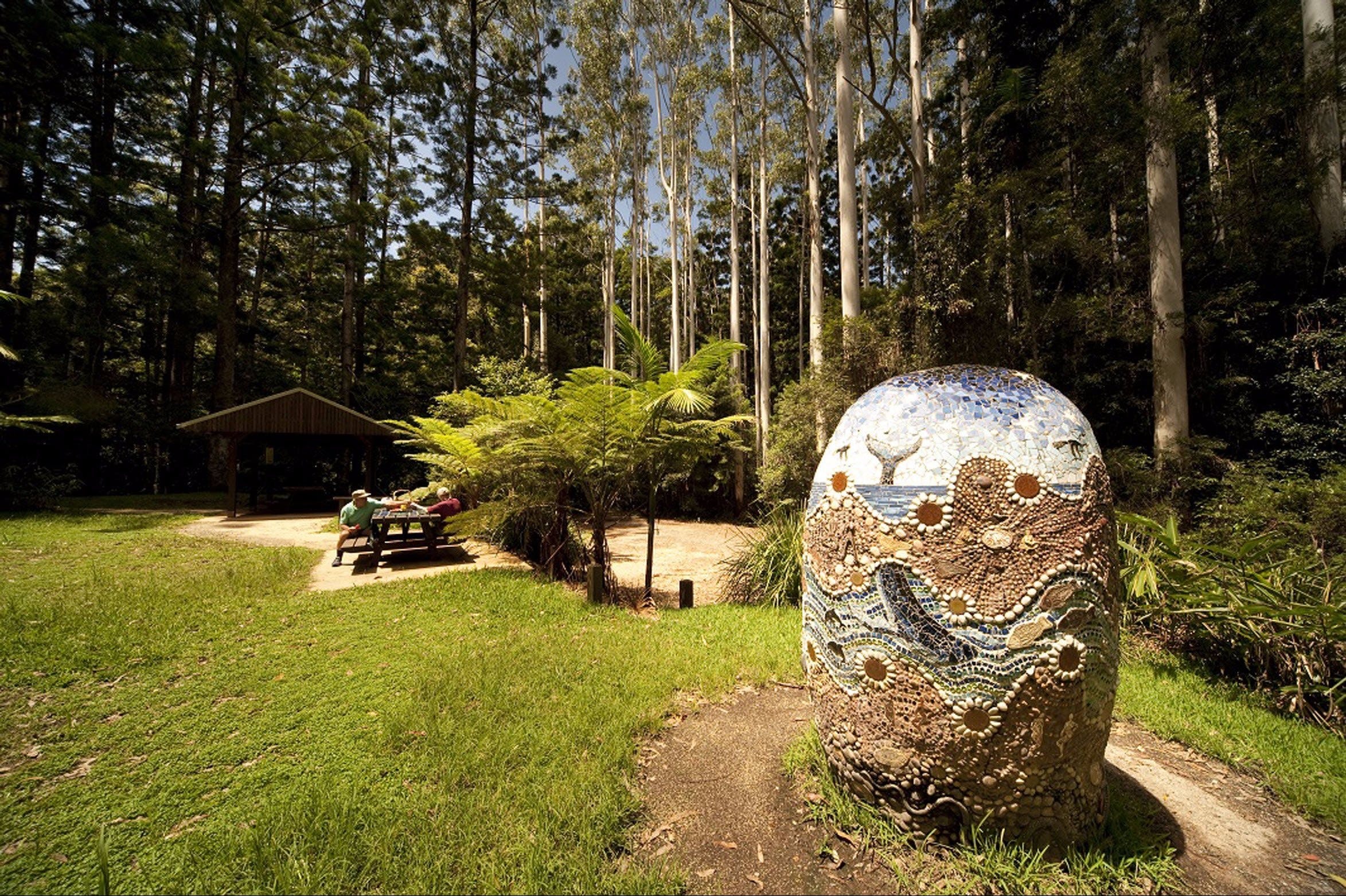 The Pines Picnic Area - ACT Tourism