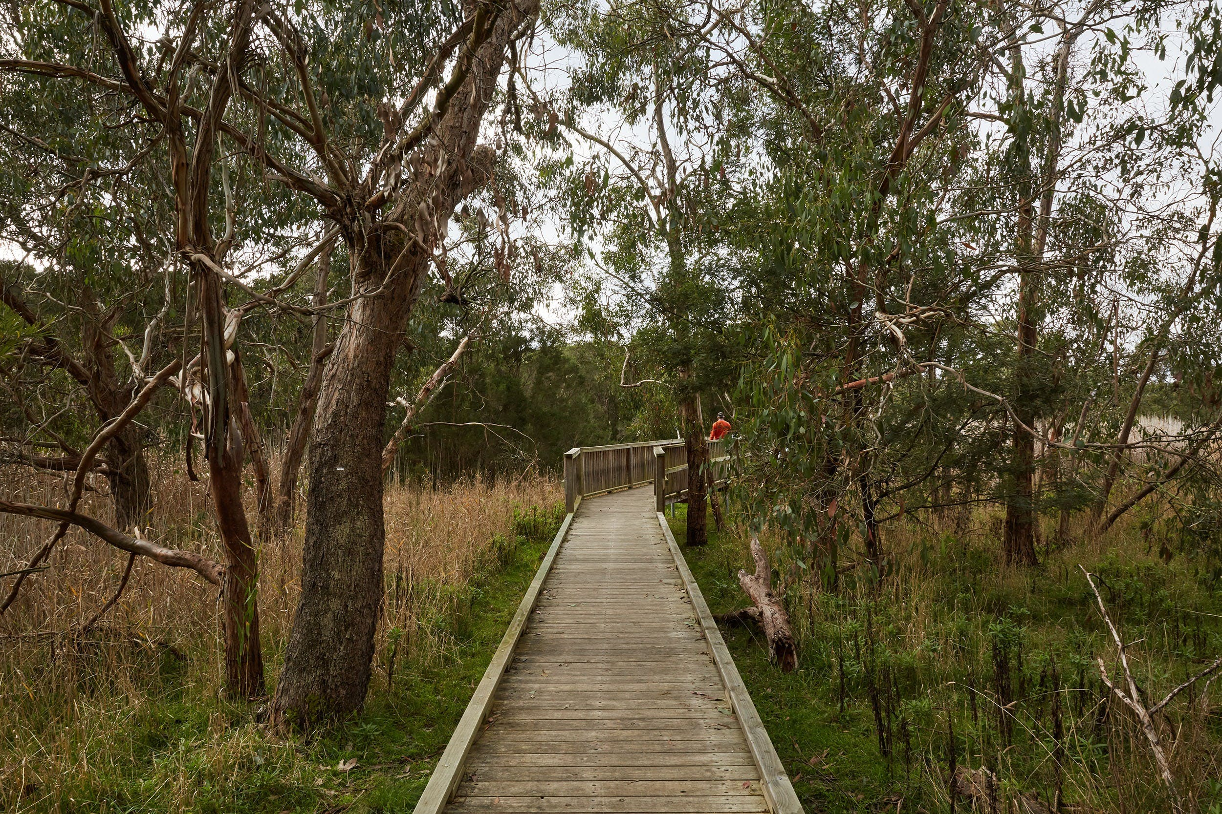 The Briars Park Walking Trails - ACT Tourism