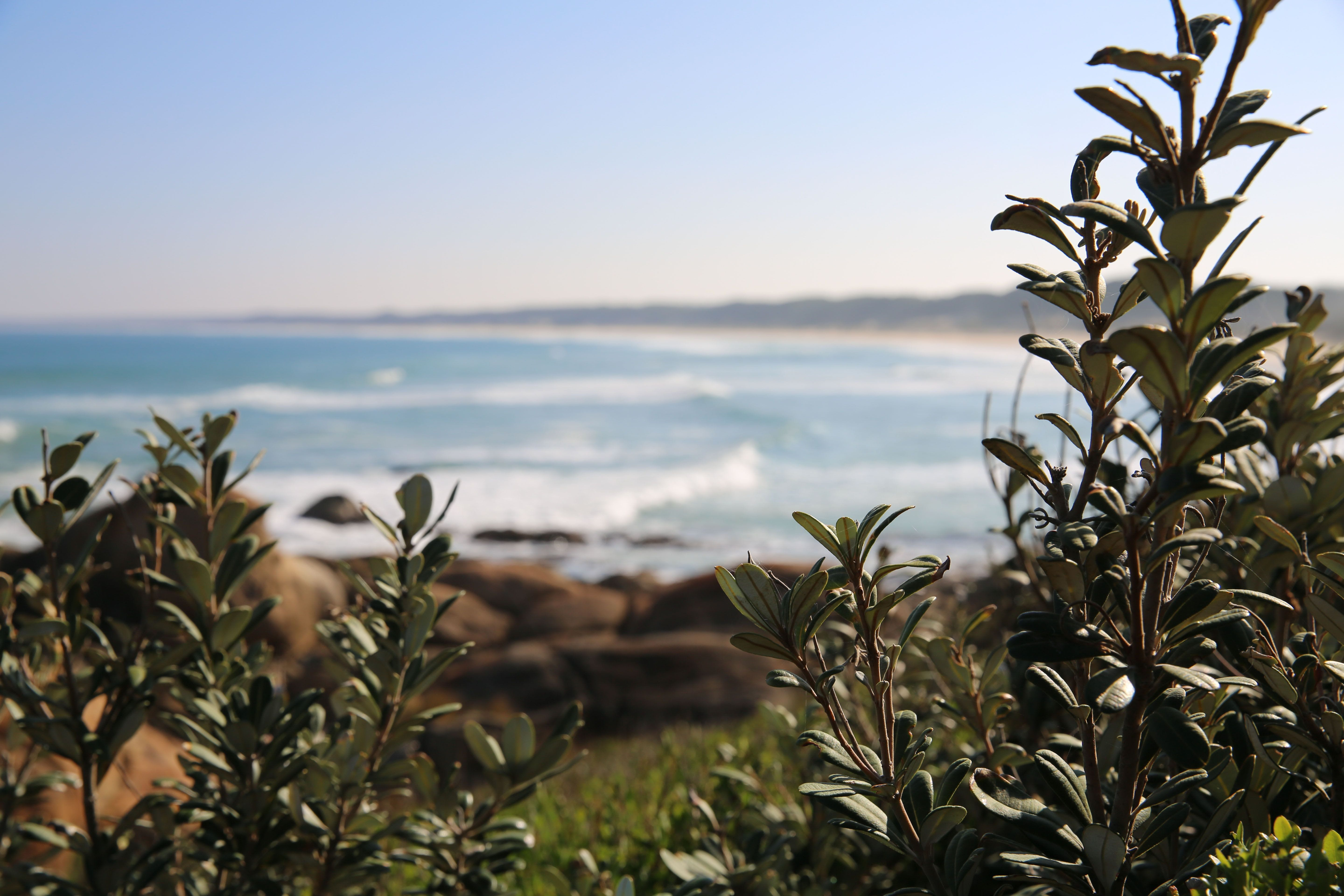 Cape Conran Coastal Park - ACT Tourism