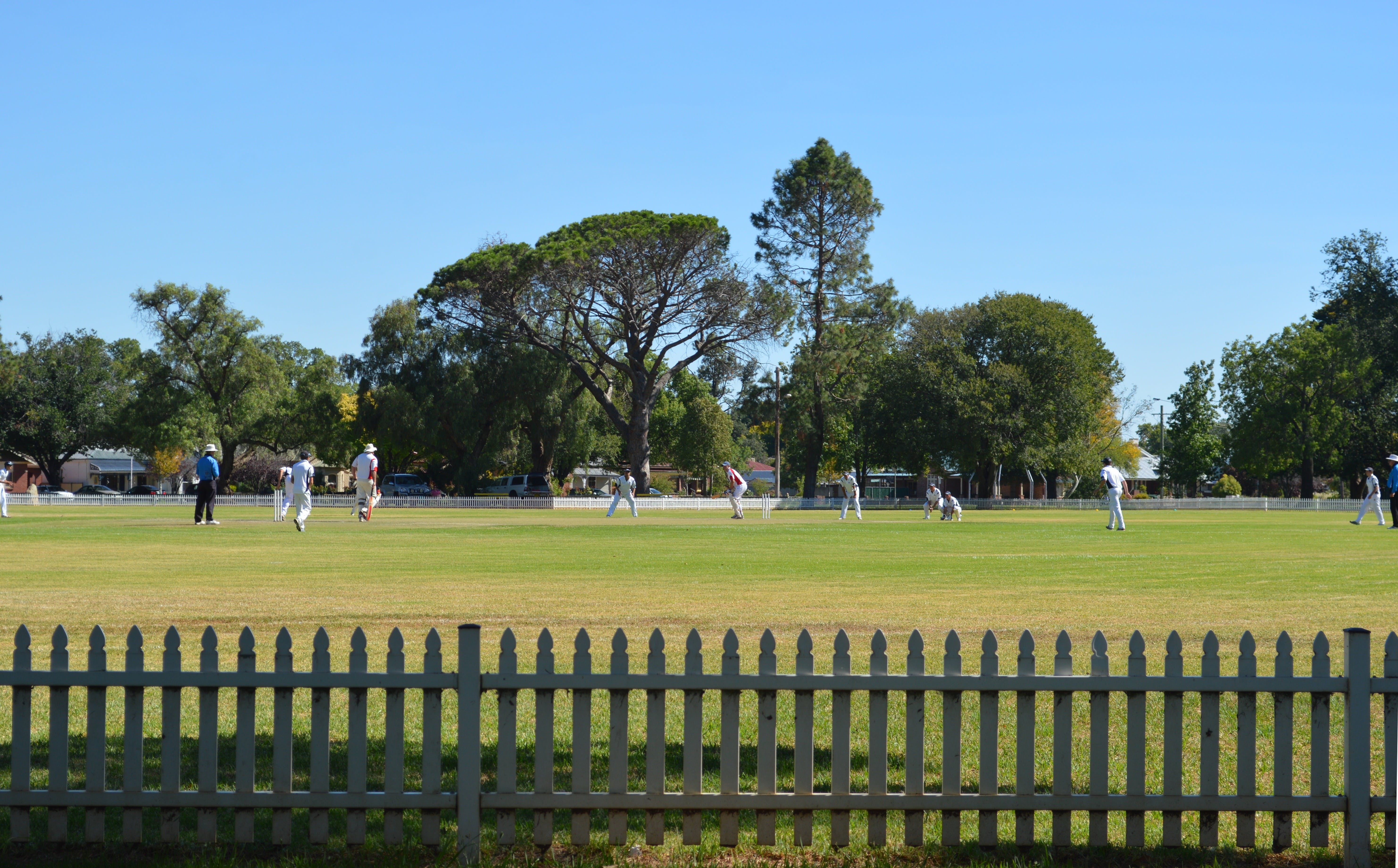 Cootamundra Cricketing Exploration - ACT Tourism