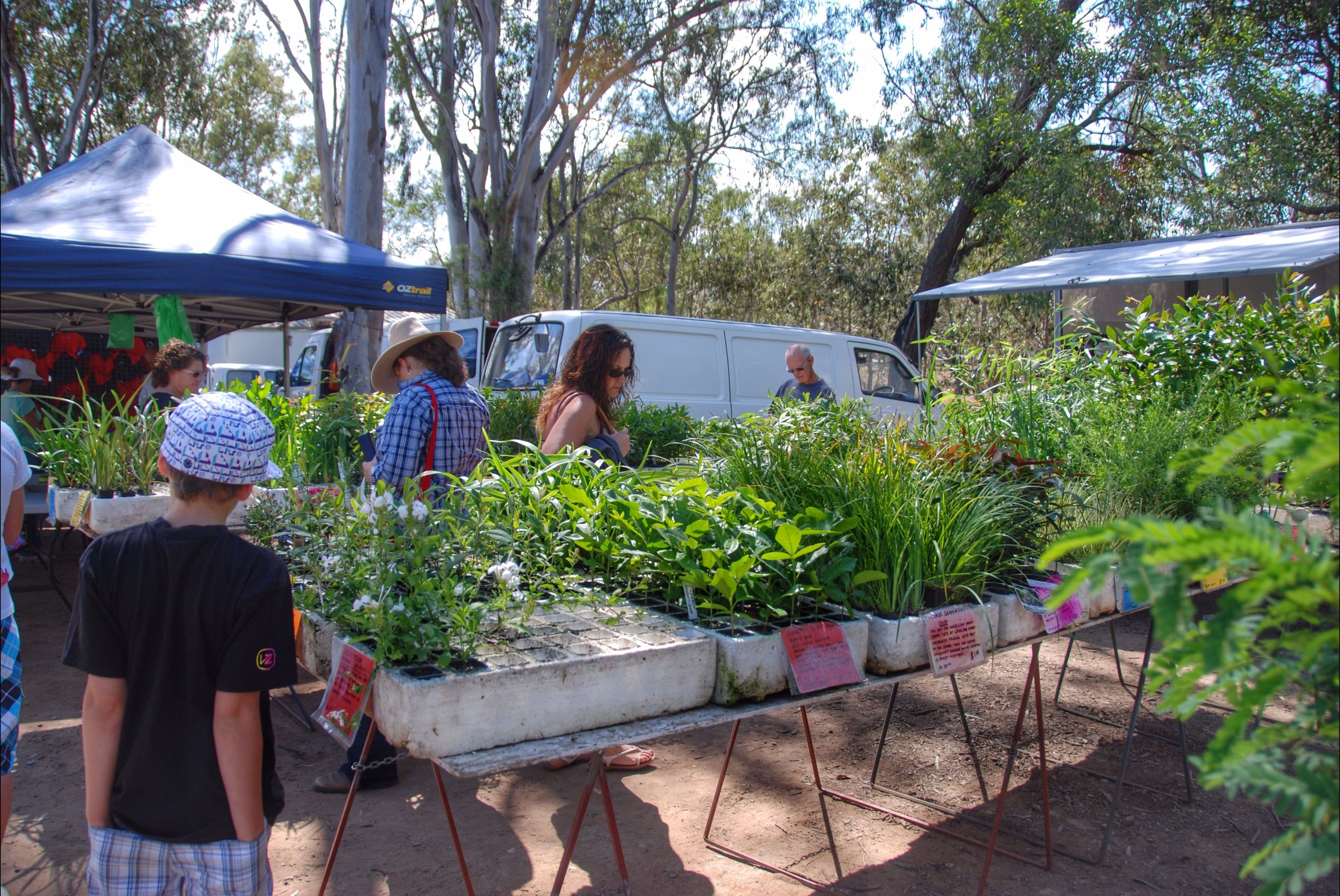 Fernvale Country Markets - ACT Tourism