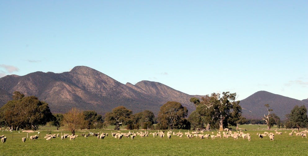 Grampians - ACT Tourism