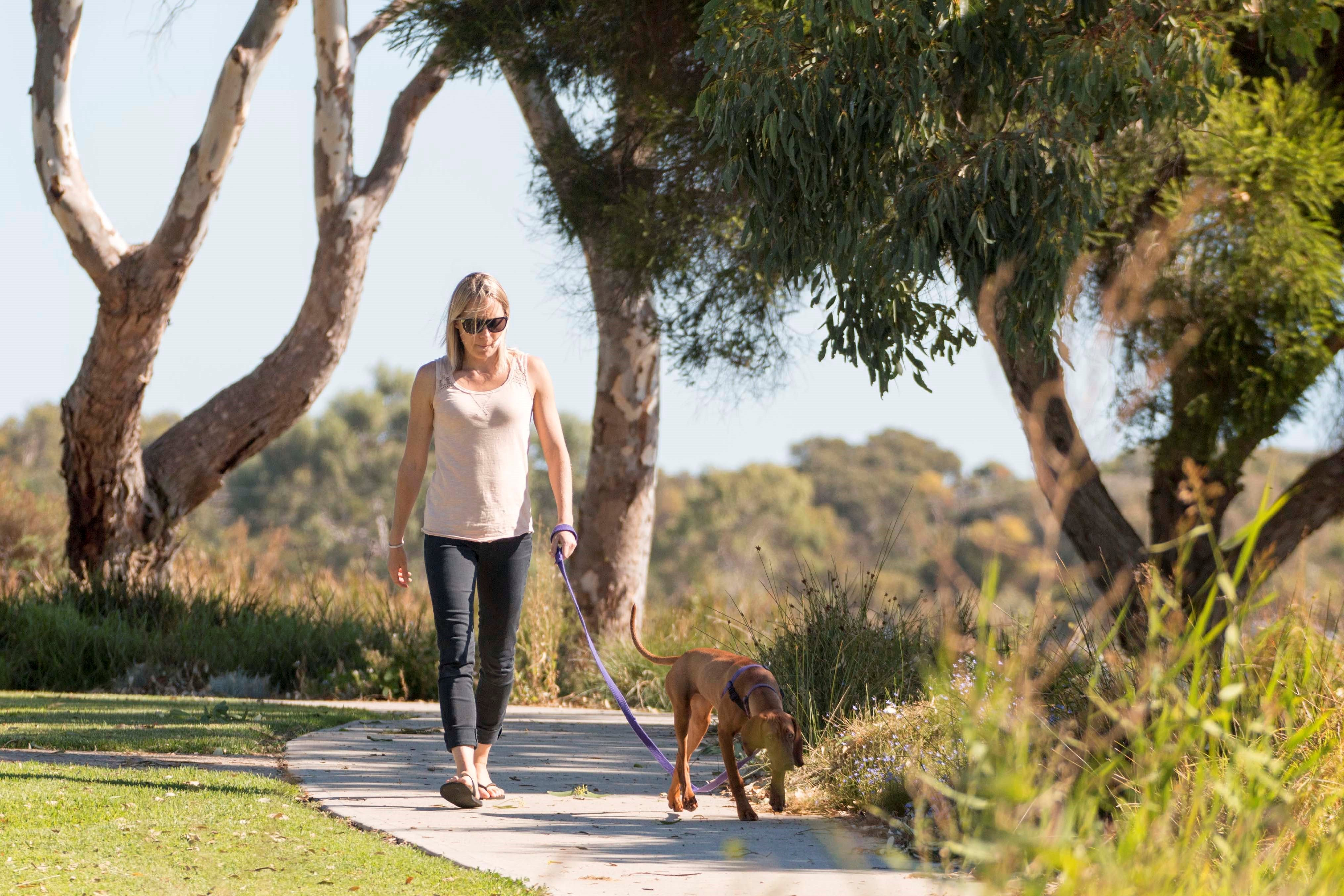 Meningie Walking and Cycling Trails - ACT Tourism