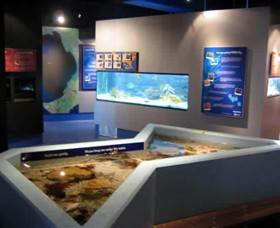 Marine and Freshwater Discovery Centre - ACT Tourism