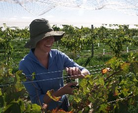 Kingsdale Wines - ACT Tourism