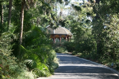 Royal Botanic Gardens Victoria - ACT Tourism