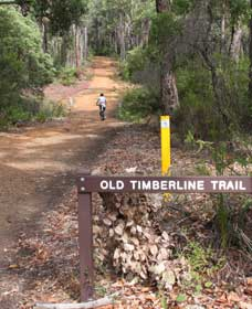 Old Timberline and Sidings Rail Trails - ACT Tourism