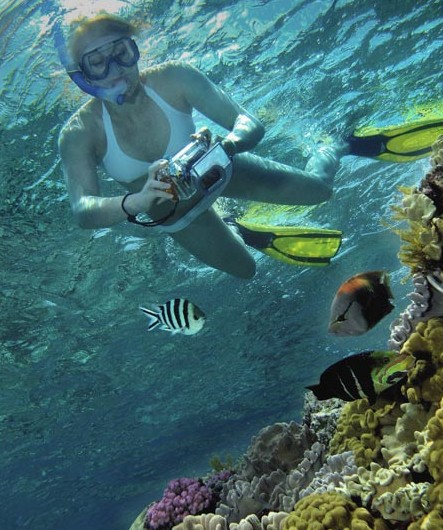 Calypso Reef Charters - ACT Tourism