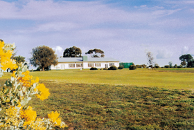 Lucindale Country Club - ACT Tourism