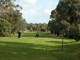 Mount Gambier Golf Club - ACT Tourism