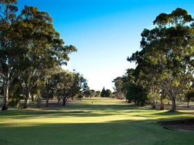 Loxton Golf Club - ACT Tourism