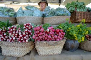 Berry Farmers' Market - ACT Tourism