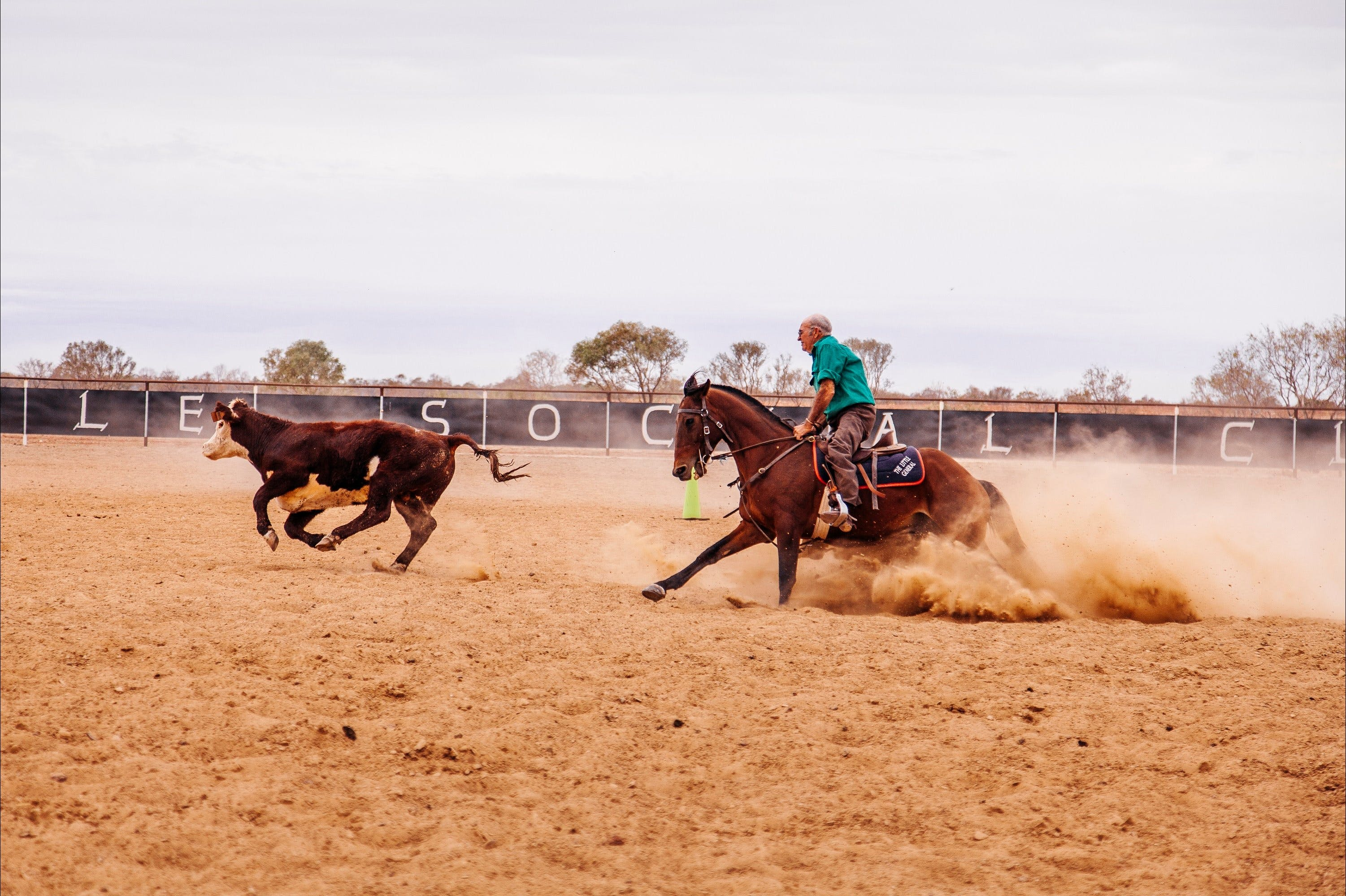 Birdsville Campdraft  Rodeo and Bronco Branding - ACT Tourism