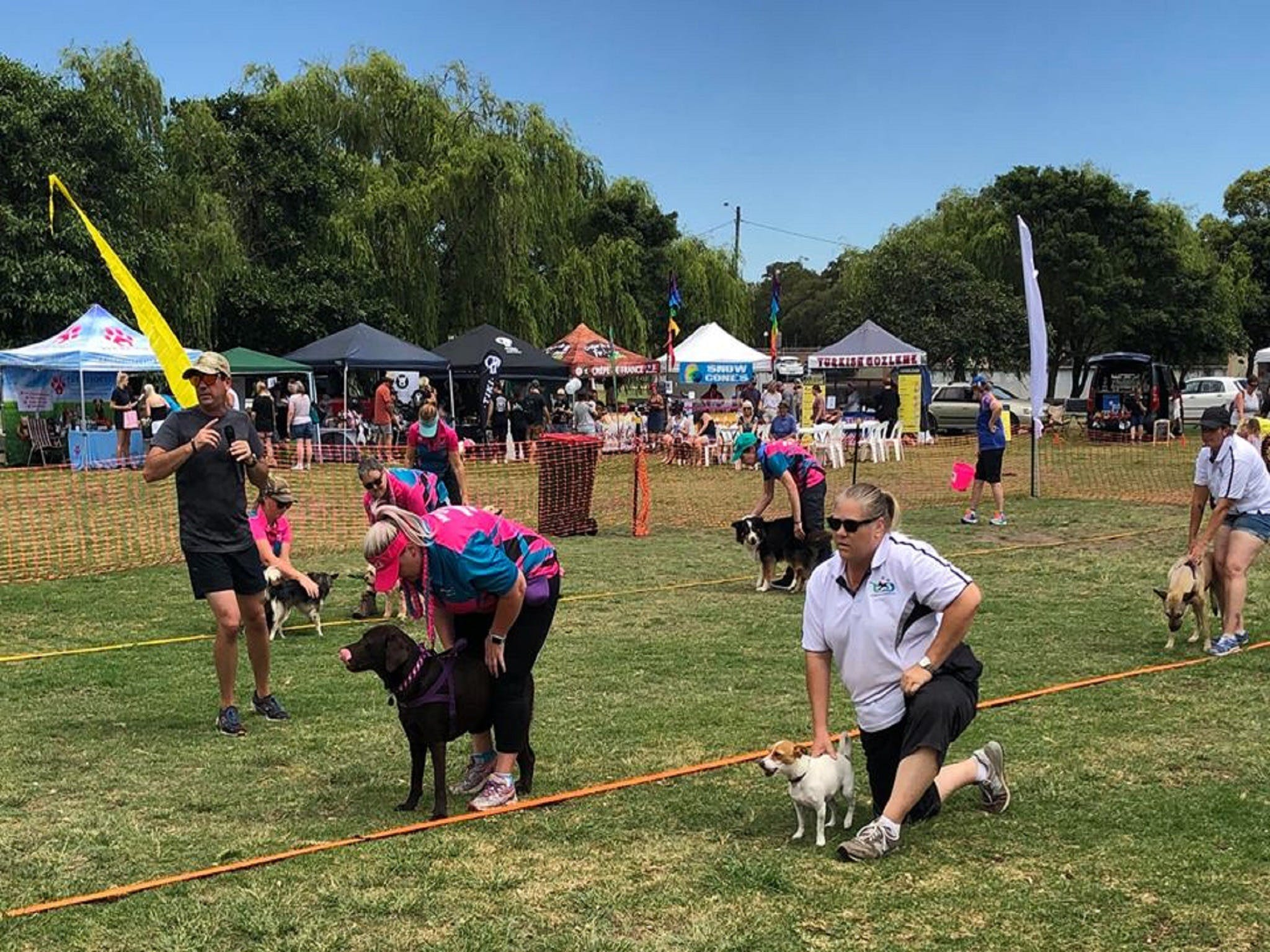 Dogs in the Park Orange - ACT Tourism