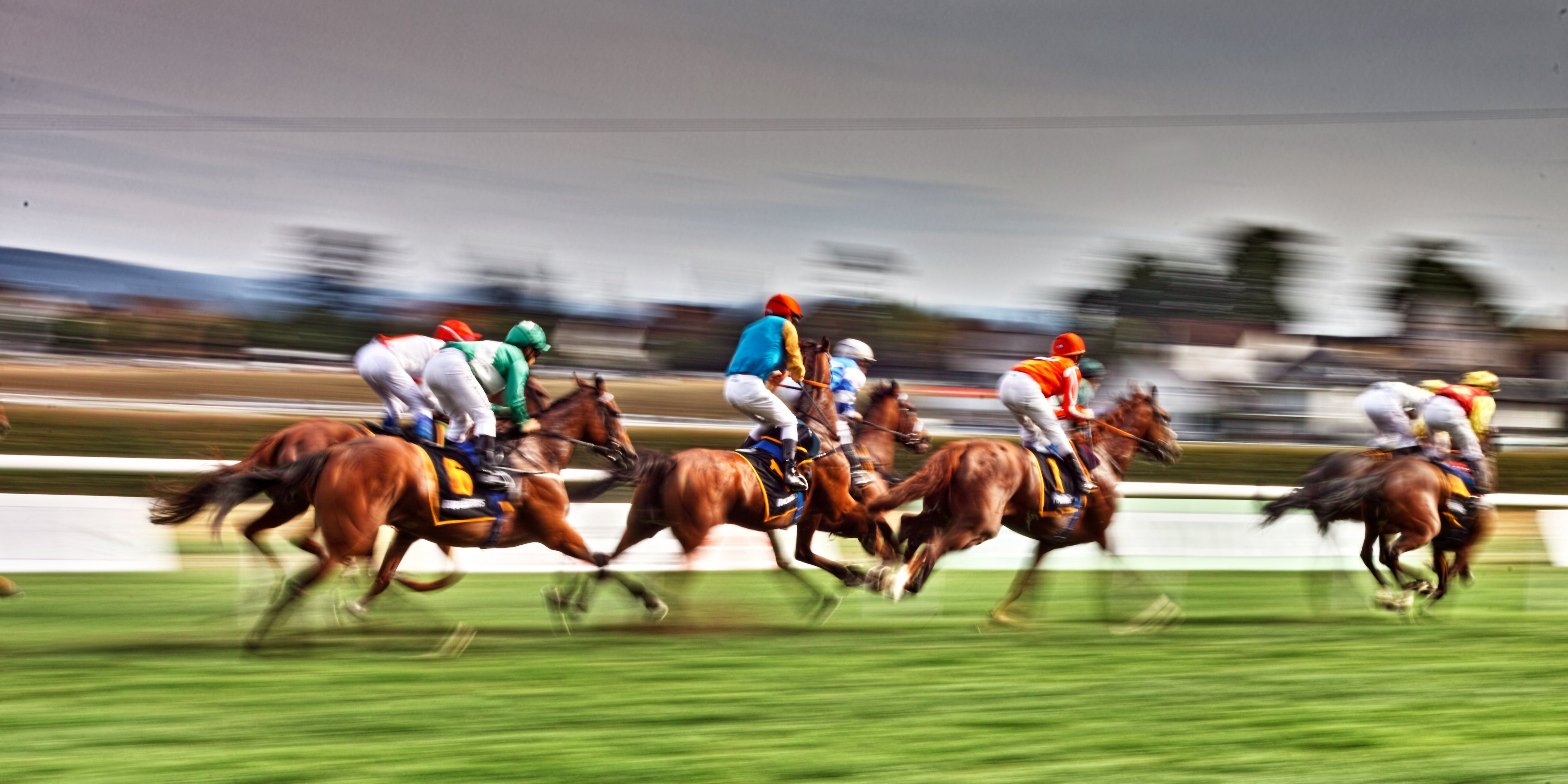 Grafton July Racing Carnival - ACT Tourism