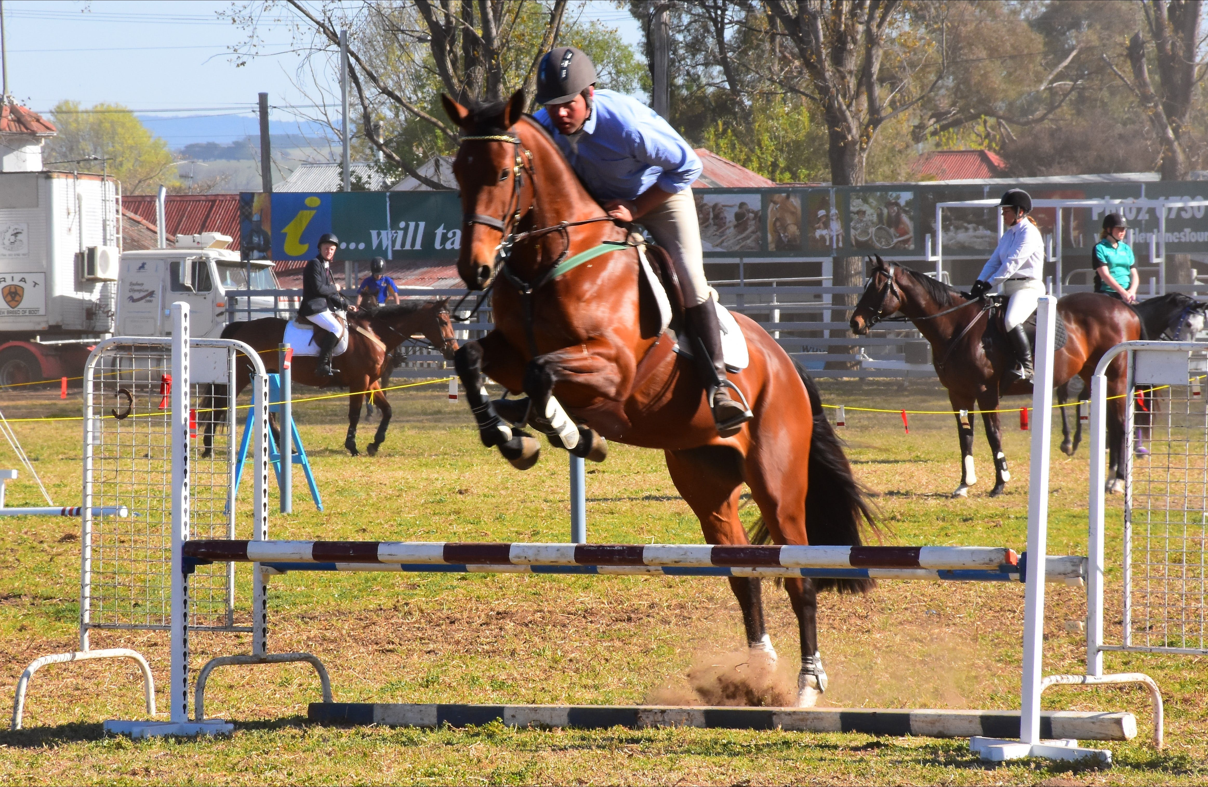 Glen Innes Pastoral and Agricultural Show - ACT Tourism