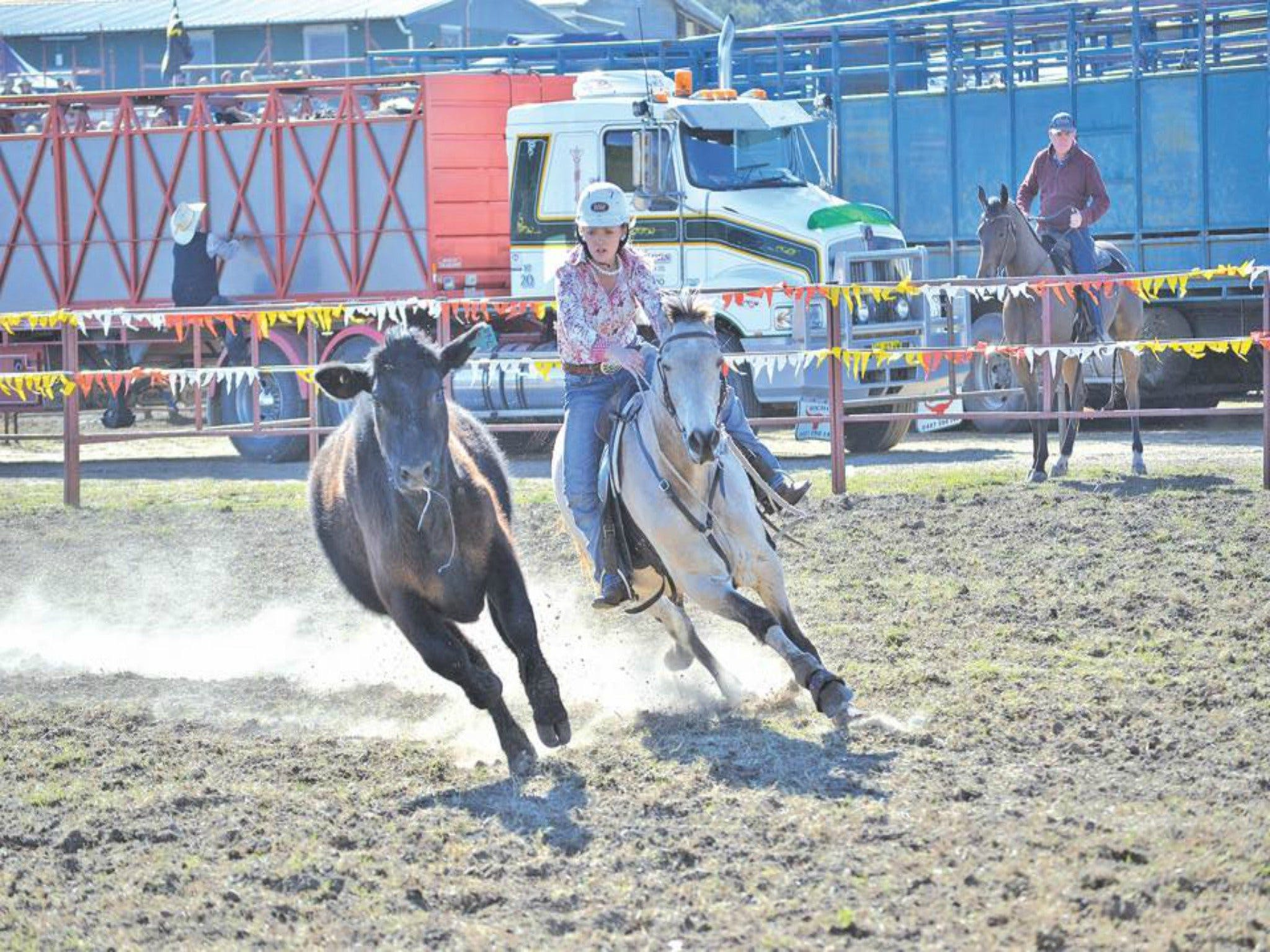 Gresford  Campdraft and Rodeo - ACT Tourism