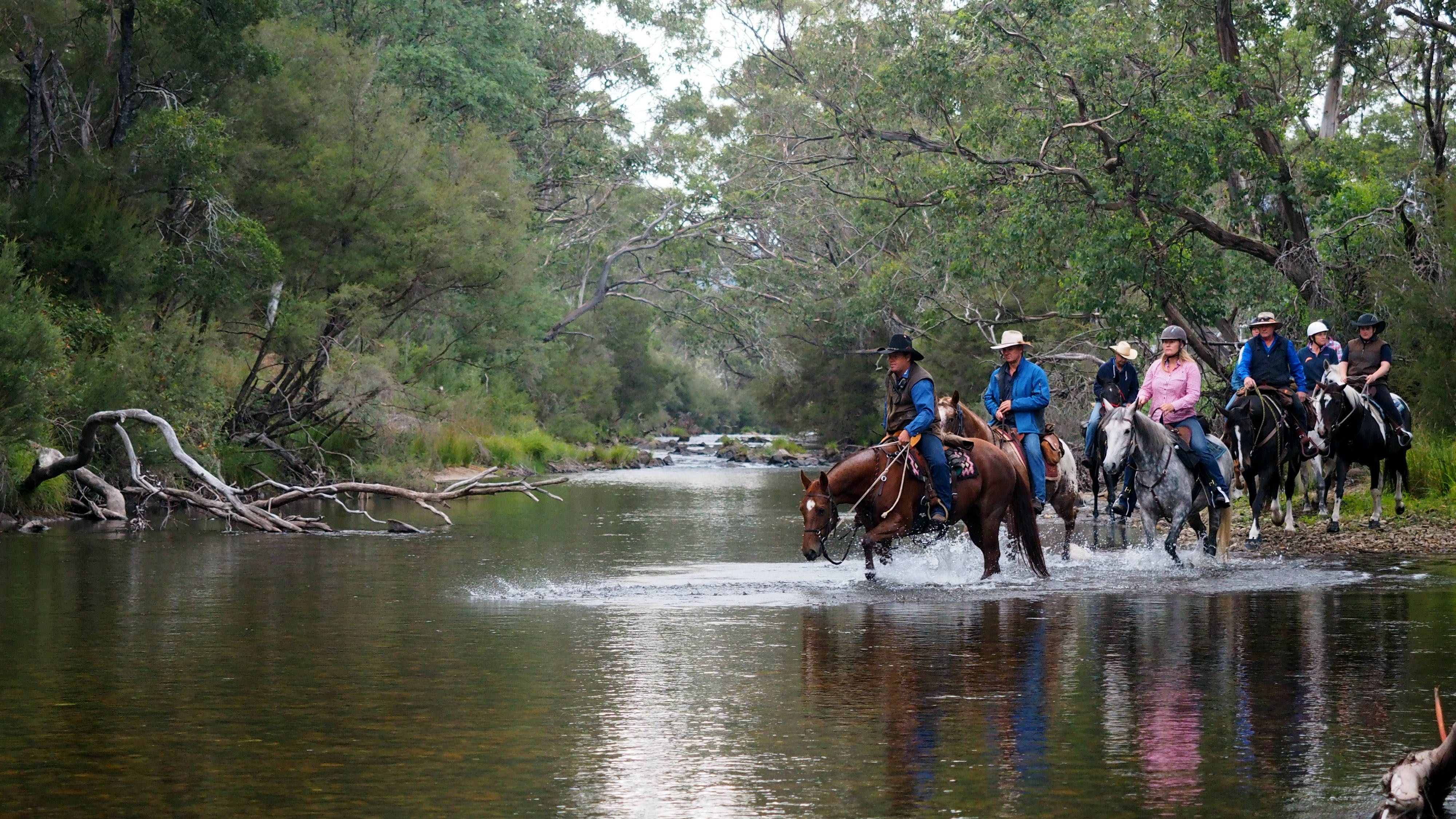 The Man From Snowy River Bush Festival - ACT Tourism