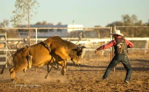 Walgett Charity Bushman's Carnival Rodeo and Campdraft - ACT Tourism
