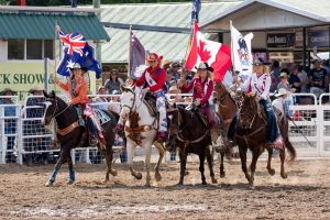 Warwick Rodeo National APRA National Finals and Warwick Gold Cup Campdraft - ACT Tourism