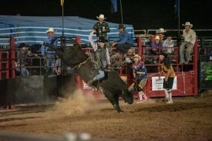Black Opal Bull and Bronc Ride - ACT Tourism