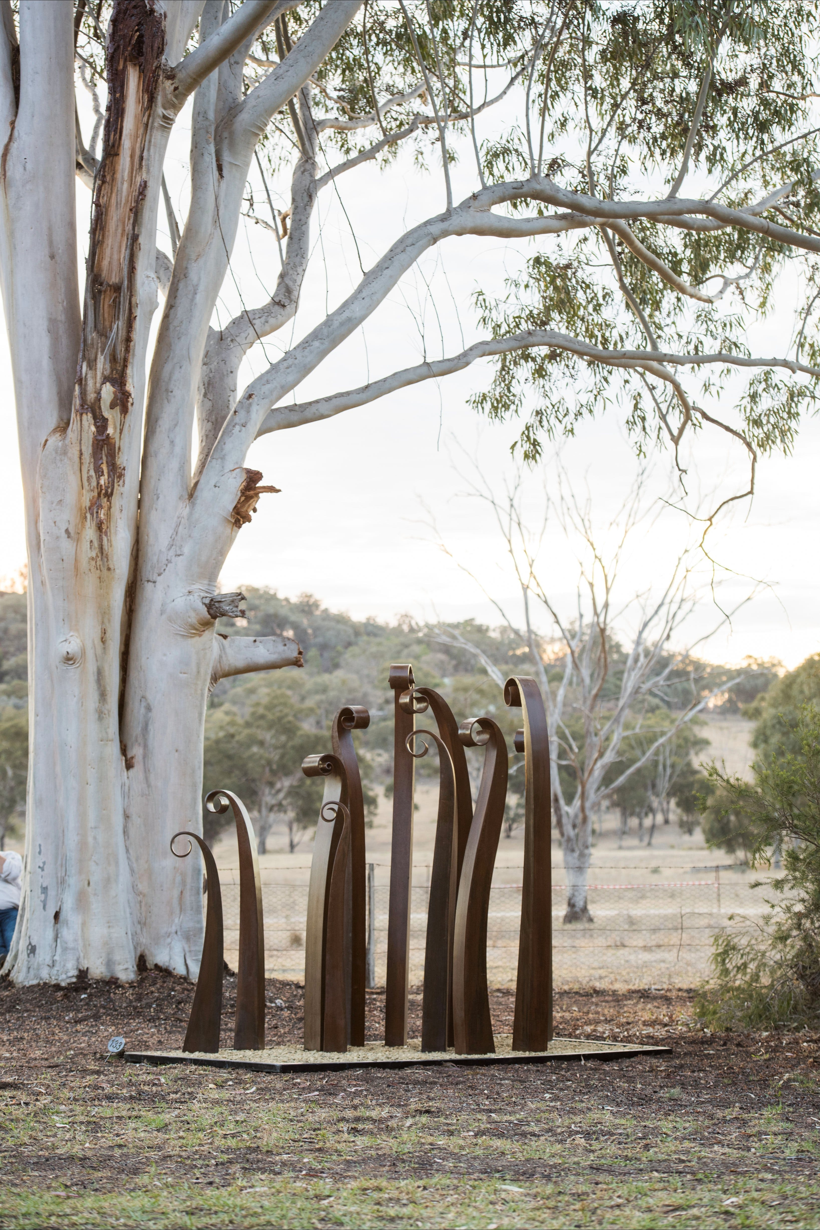 Sculptures in the Garden - ACT Tourism